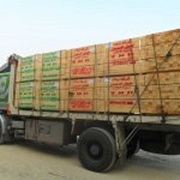 Eldahman CO For Importing & Exporting Wood